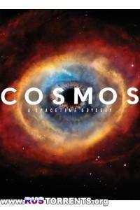 Космос: Пространство и время [S01] | HDTVRip, WEBRip | P1