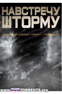 Навстречу шторму | WEB-DL 1080p | iTunes