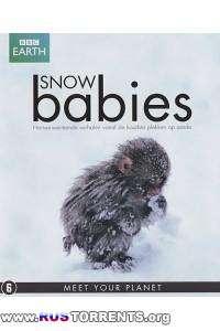 Дети снегов | HDRip