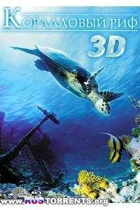 Коралловый риф 3D | BDRip 720p