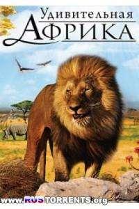 Удивительная Африка 3D | BDRip