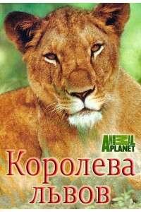 Animal Planet. Королева львов [01-04] | HDTVRip | P1