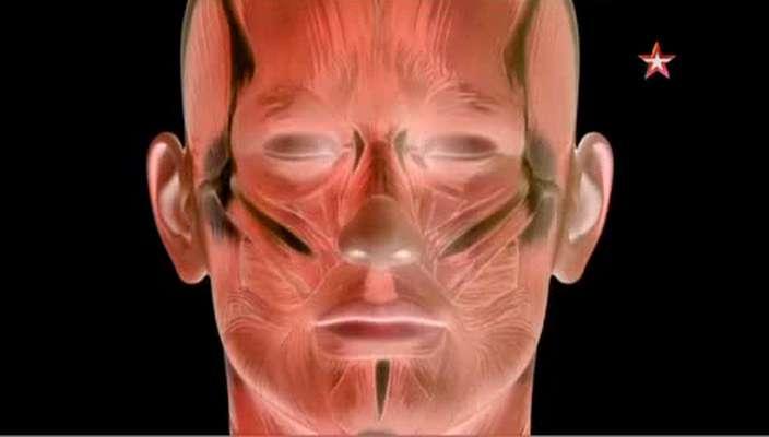 Научный детектив. Спасти лицо! | SATRip