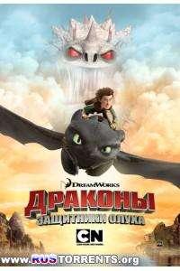 Драконы: Защитники Олуха [S02] | WEB-DLRip | Невафильм
