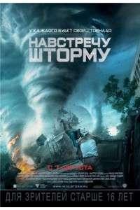 Навстречу шторму | DVD5 | Лицензия