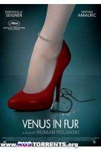 Венера в мехах | BDRip 720p | D, A