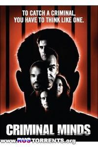 Мыслить как преступник [01-10 сезоны: 1-233 серии из 233] | WEB-DLRip | P