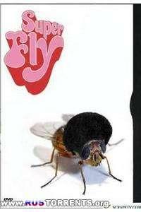 Супер муха