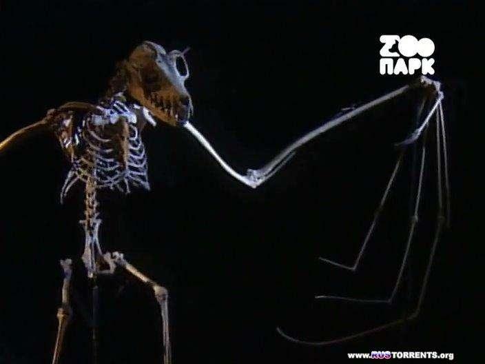 Взрослые сказки о животных (01-26 серии из 26) | SATRip