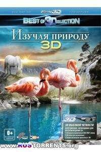 Изучая природу 3D | BDRip