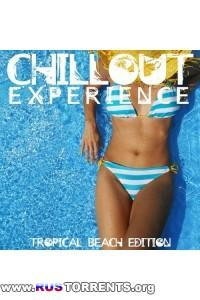 VA - Chillout Experience