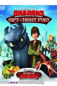 Как приручить дракона: Дар ночной фурии | BDRip