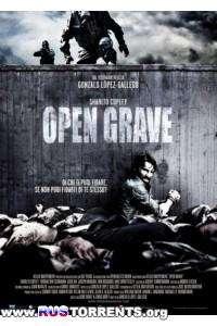 Открытая могила | HDRip