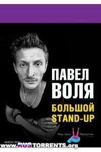 Павел Воля. Большой Stand Up / Концерт в театре эстрады | WEB-DLRip