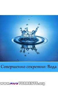 Совершенно секретно: Вода | SATRip | P1