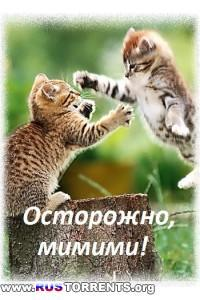 Осторожно, мимими! | SATRip