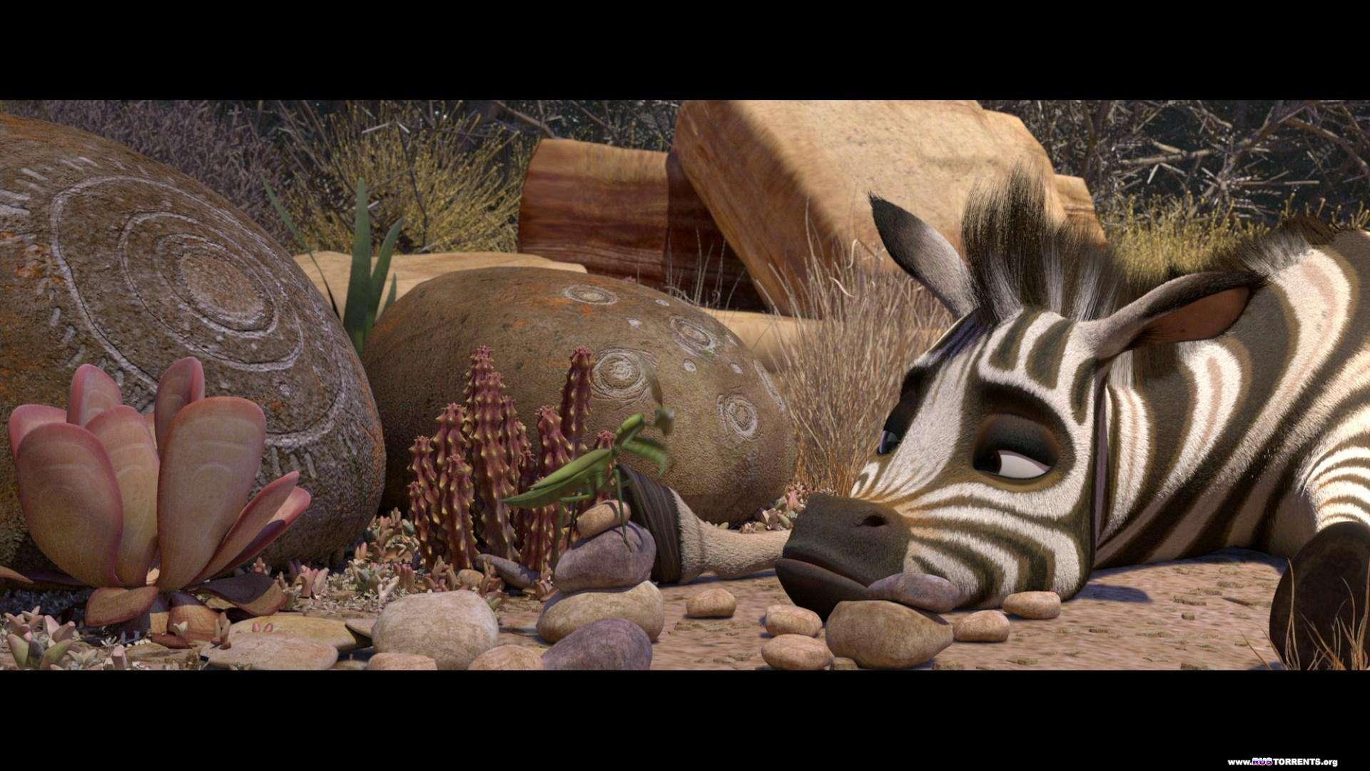 Король сафари / Кумба | BDRemux 1080p | D | лицензия