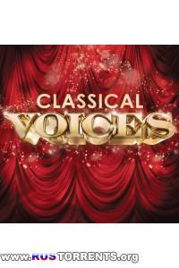 VA - Classical Voices