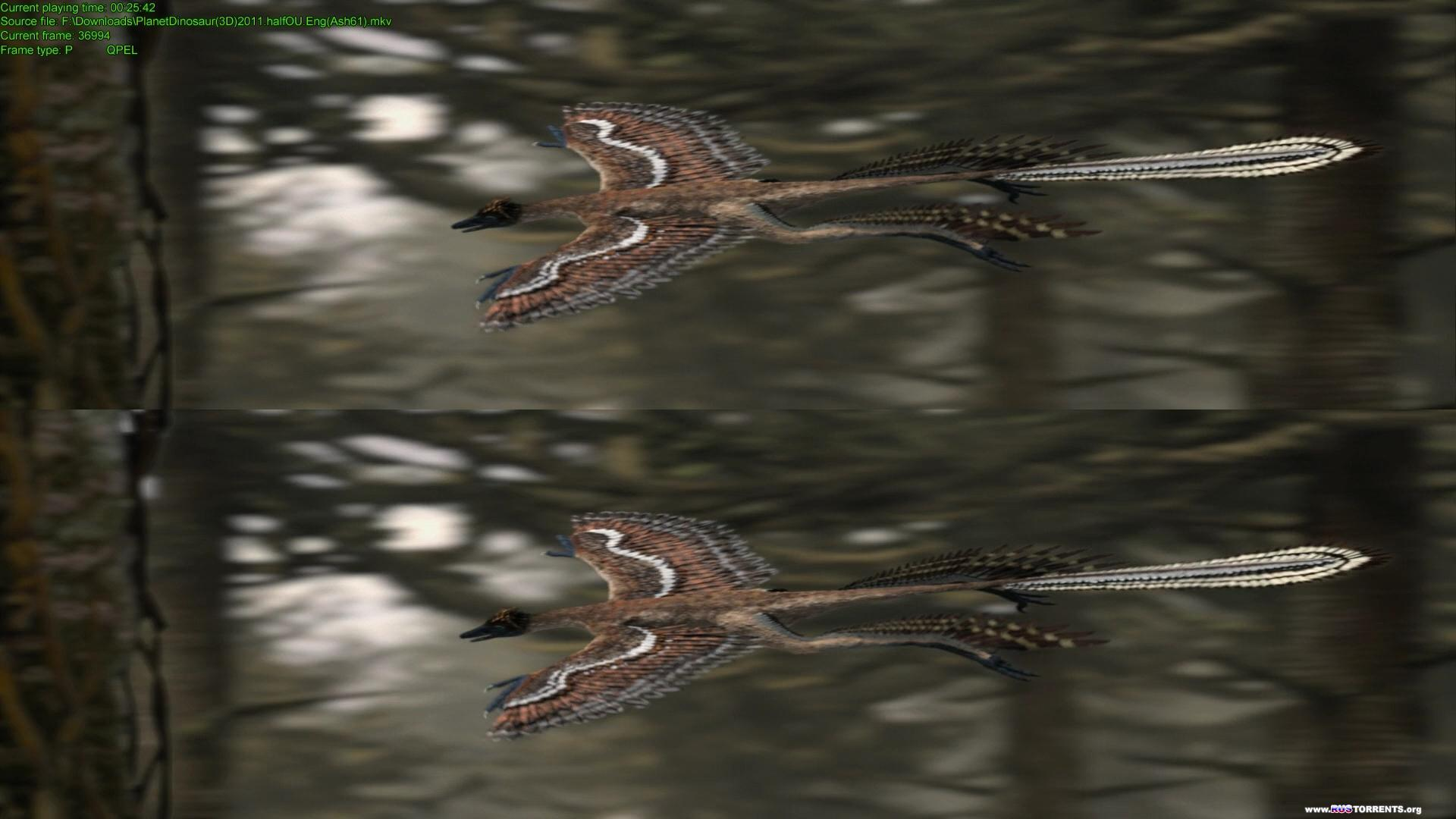 ������� ����������: ����������� ������   BDRip 1080p   3D-Video   halfOU   P1