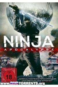 Ниндзя Апокалипсиса | BDRip 720p | L1
