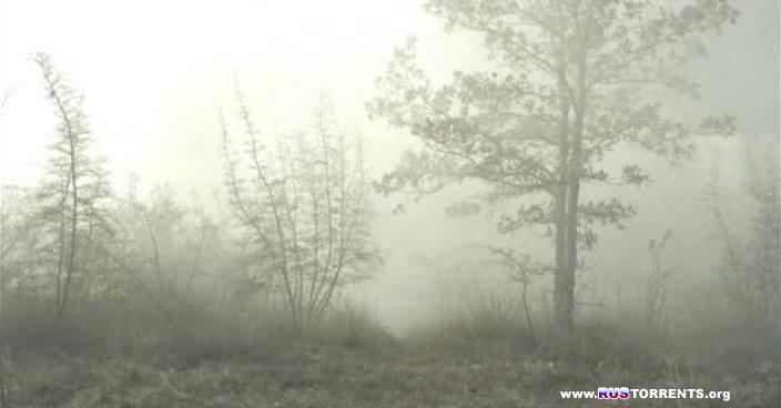 Туман. 1 серия из 2
