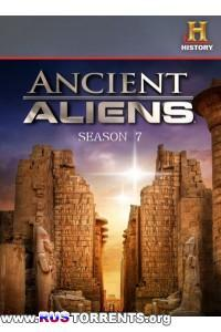 Древние пришельцы [S07x01-05] | HDTVRip 720p | P2
