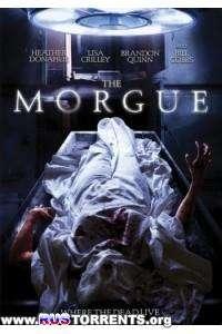 Морг | DVDRip