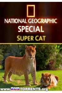 Nat Geo Wild: Суперкошка | HDTVRip