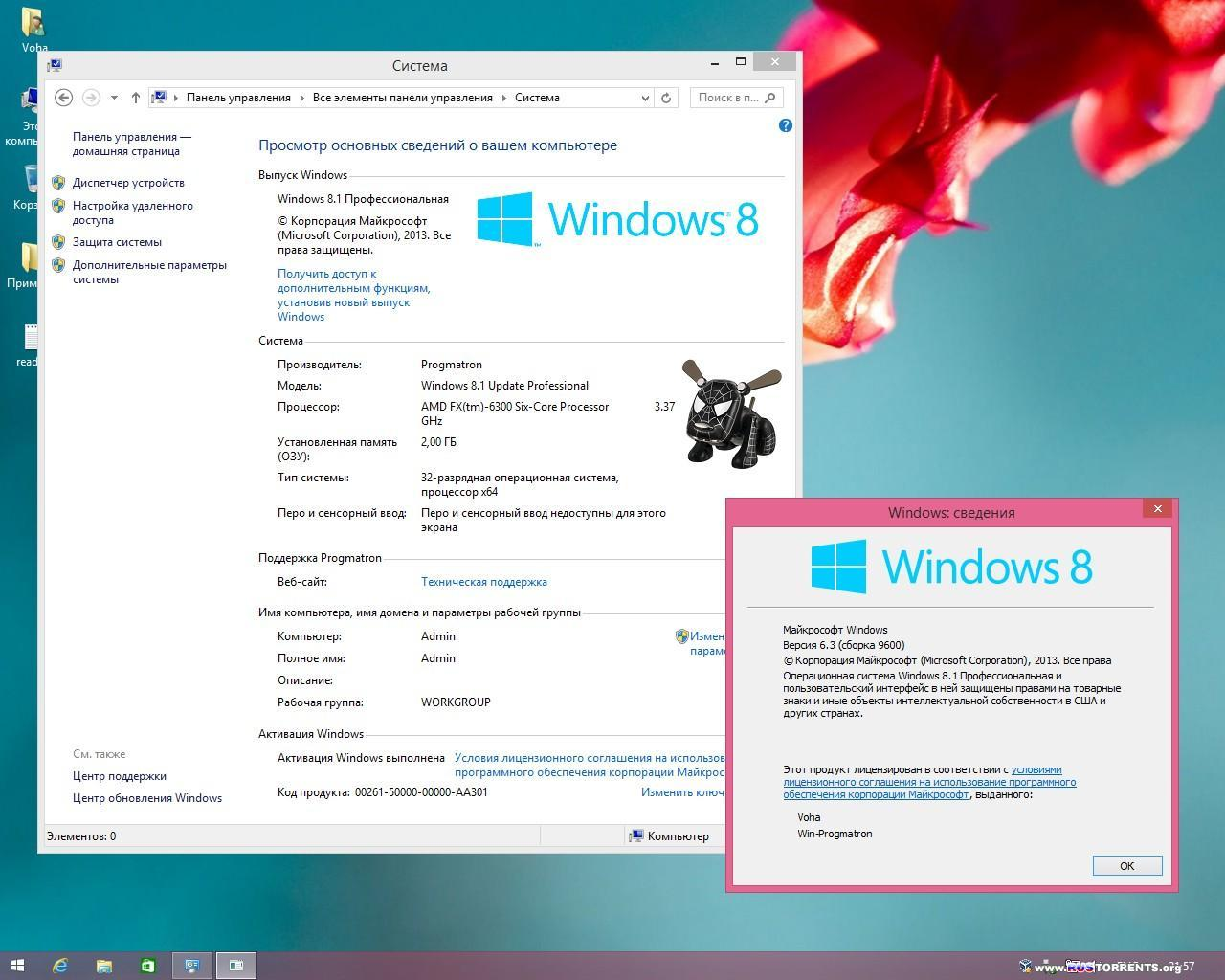 Windows 8.1 Update1 Core/Pro/Enterprise x86/x64 6.3 9600.17031 MSDN by Progmatron 22.04.2014 RUS