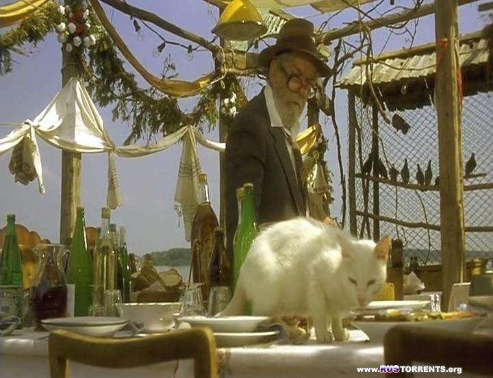 Чёрная кошка, белый кот | DVDRip-AVC