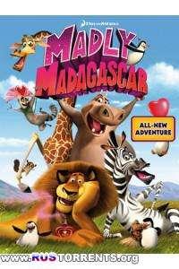 Безумный Мадагаскар   DVDRip