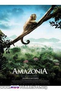 Амазония | BDRip