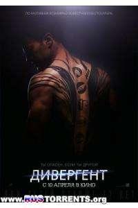 Дивергент | HDRip | Лицензия
