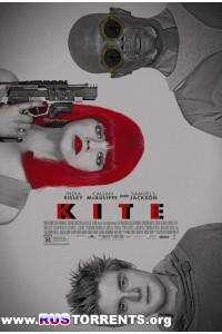 Кайт | DVDRip | Лицензия