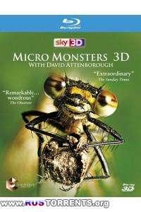 Микромонстры 3D с Дэвидом Аттенборо [S01x1-6 из 6] | BDRip 1080p | 3D-Video HOU | P1
