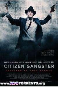 Гражданин гангстер | HDRip
