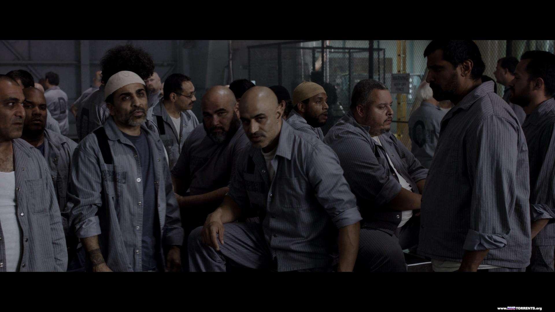 План побега | BDRemux 1080р | US Transfer | Лицензия