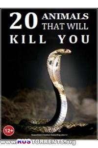 Nat Geo Wild: 20 животных, которые могут вас убить | HDTVRip