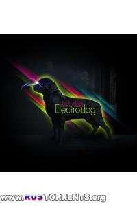 Loc-Dog-Electrodog