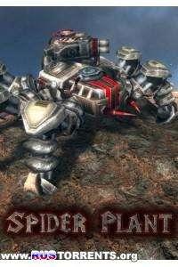 Spider Plant | РС