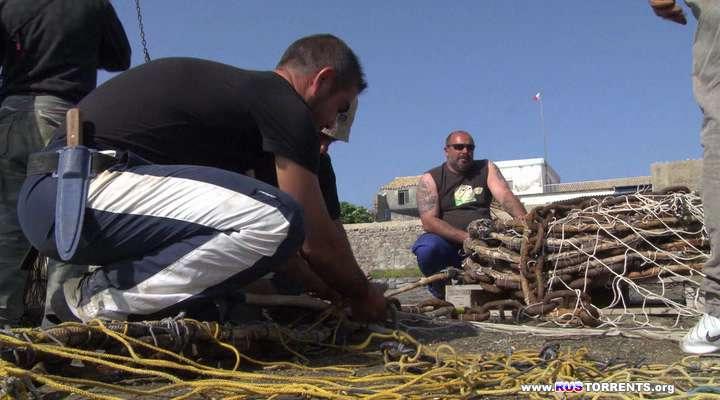 Супер-рыба: Стотысячелетний план (1 серия из 5) | HDRip