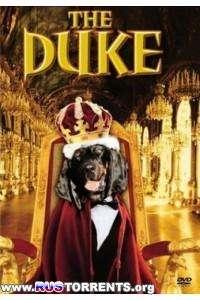 Герцог Дюк | DVDRip