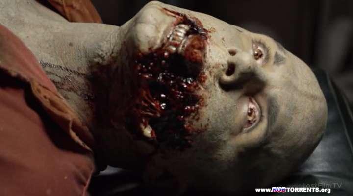 Нация Z [01 сезон: 01-13 серии из 13] | WEB-DLRip | LostFilm