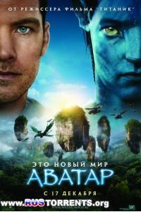Аватар | BDRip 1080p | Extended Collector's Edition