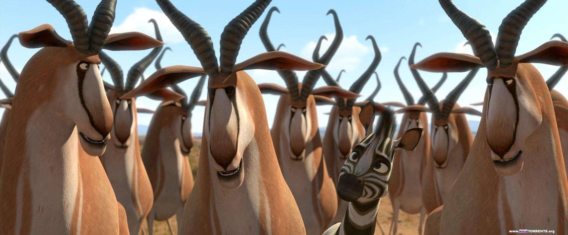 Король сафари / Кумба | BDRip 1080p | D, L1 | Лицензия