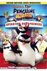 Пингвины из Мадагаскара | BDRip