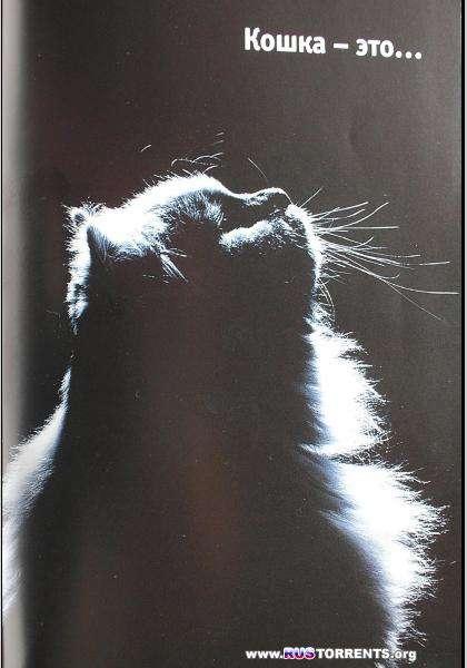 Кошка. Руководство по уходу