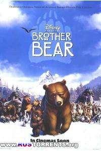 Братец медвежонок | DVDRip | P