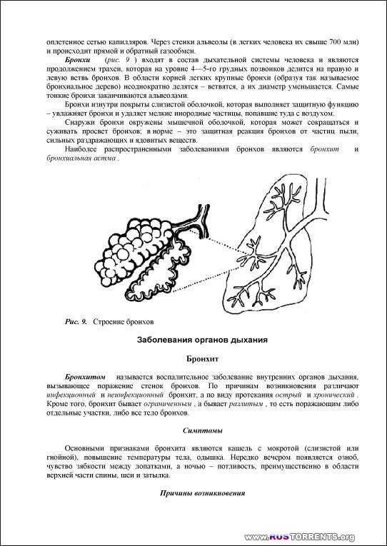 Здоровье мужчины. Энциклопедия