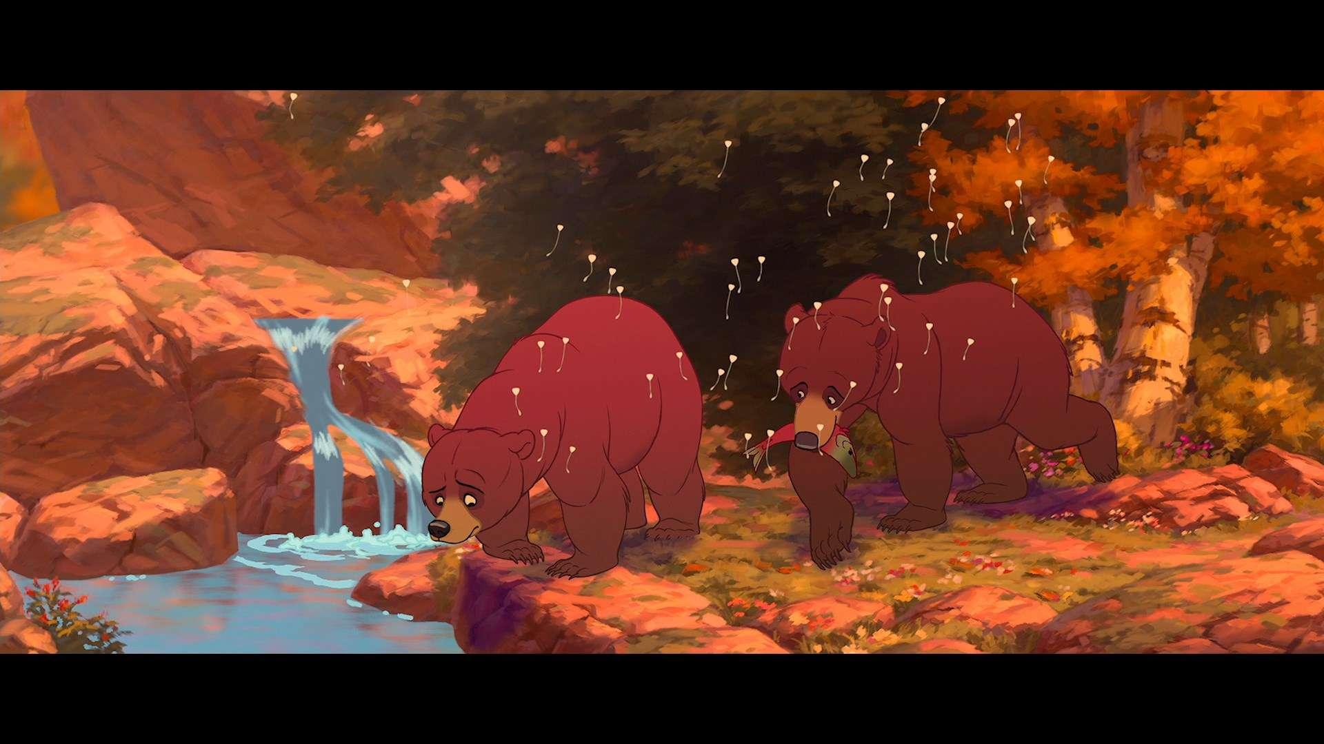 Братец медвежонок | BDRemux 1080p